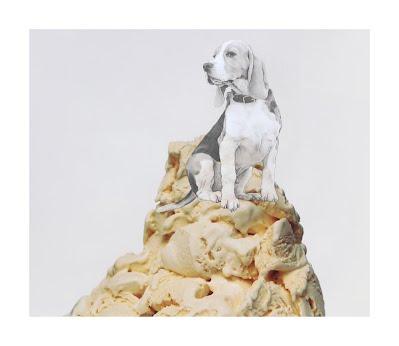 ICE CREAM DOG 6_Eugenio Rivas