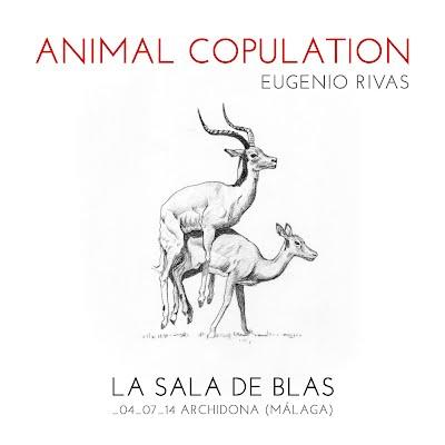 Animal Copulation, Eugenio Rivas, La Sala de Blas