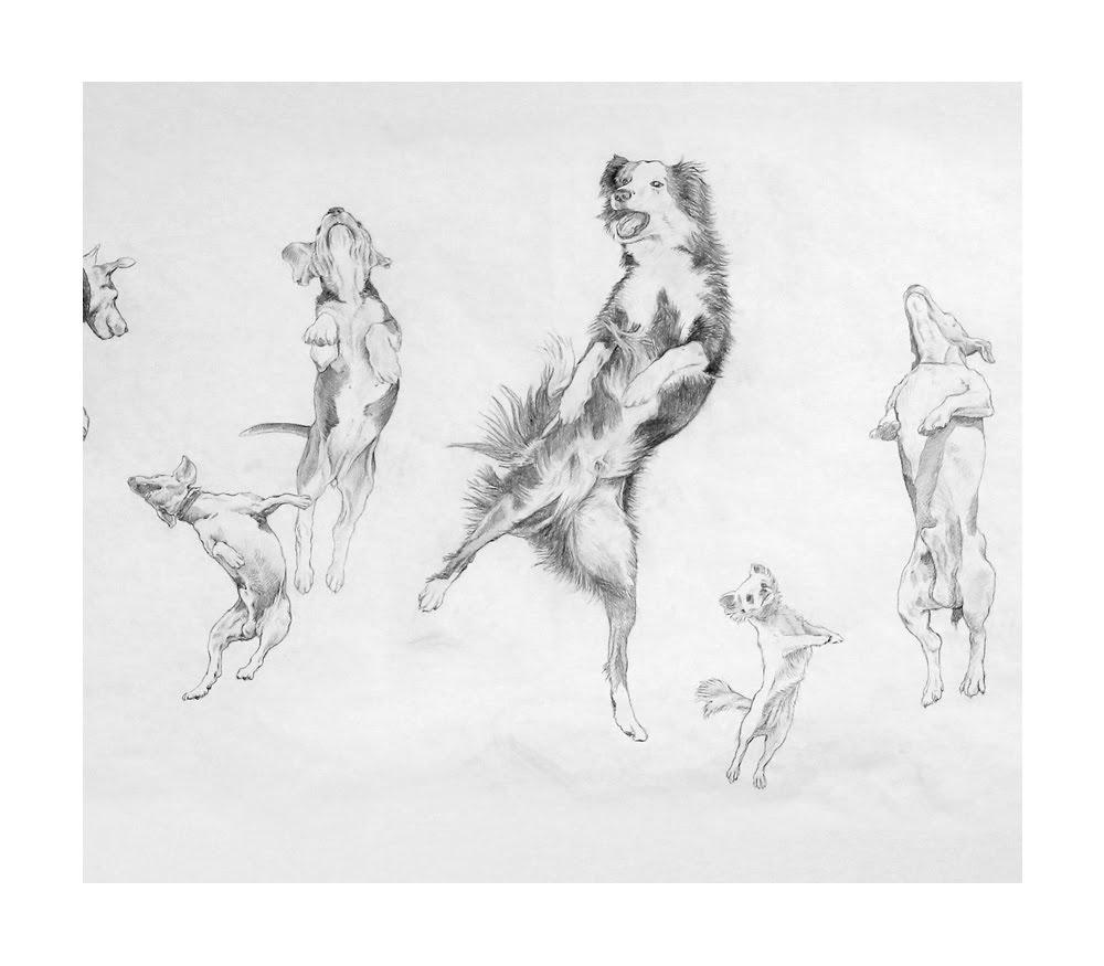 Eugenio Rivas_JUMPING DOGS