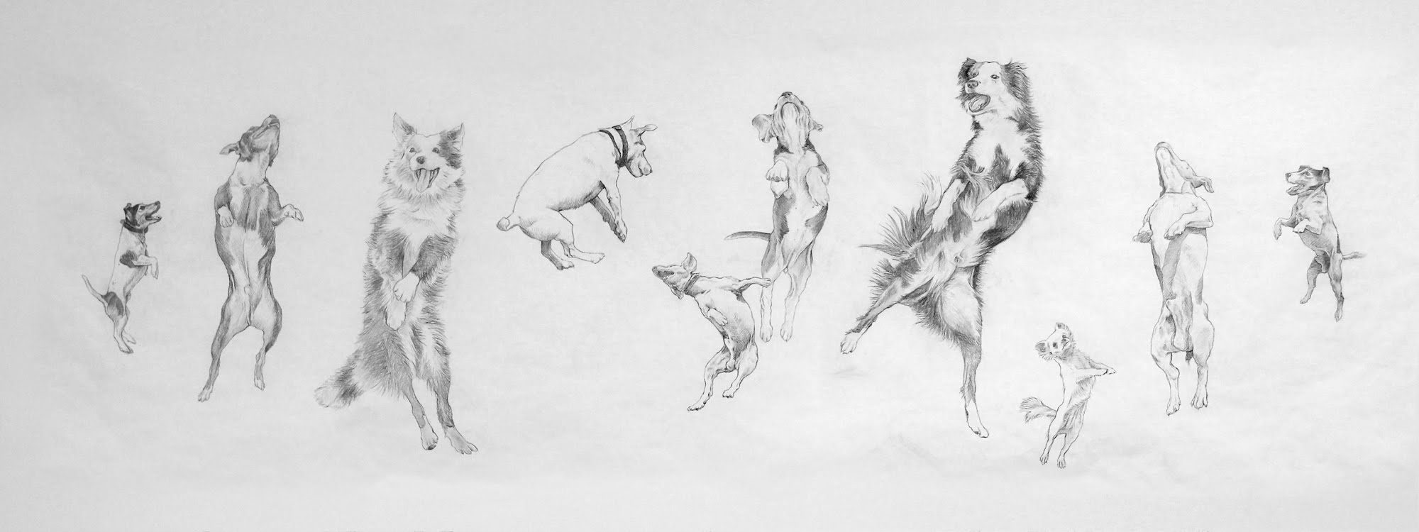 Eugenio Rivas_JUMPING DOGS