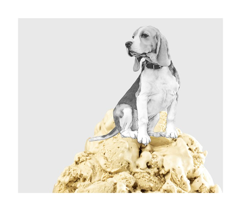 Eugenio Rivas ICECREAM DOG 6