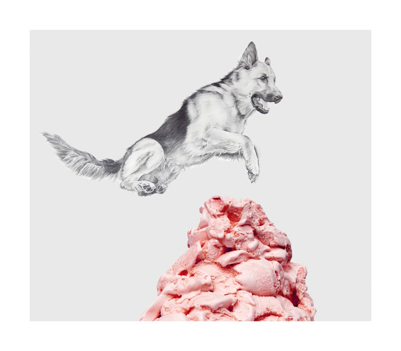 Eugenio Rivas_IceCreamDog2