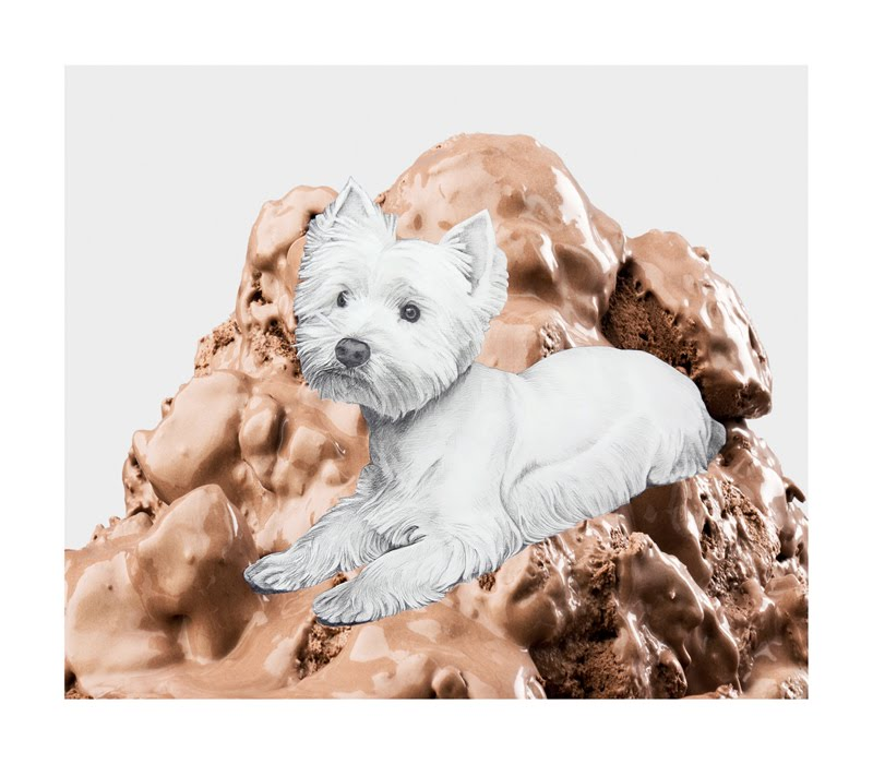 Eugenio Rivas_IceCreamDog3